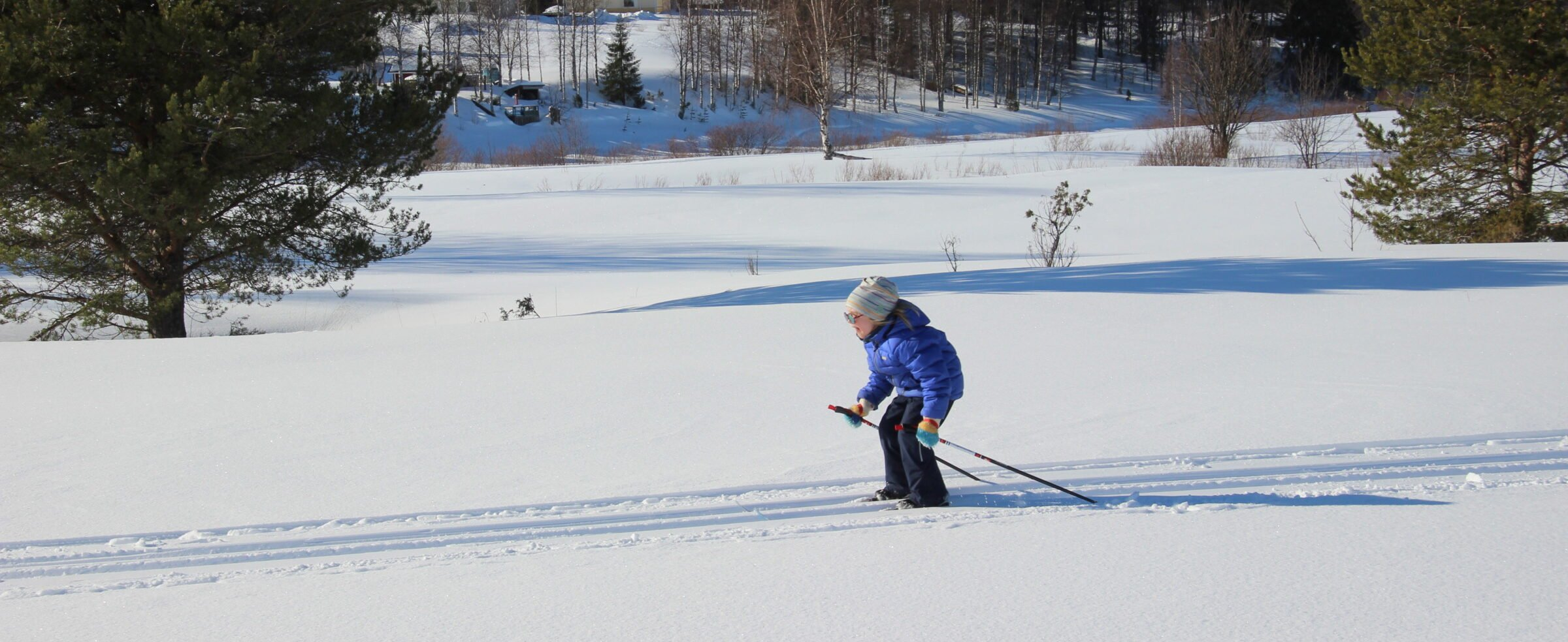 Hiihtäjä Pikkukuusisaaren ladulla Nivankylässä (c) Piia Juntunen-Laakso 2020